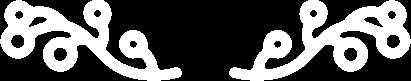 Biotraubensaft